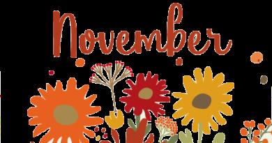 Vad hände i November 2017?