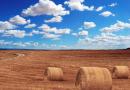 Jordbruket inom EU